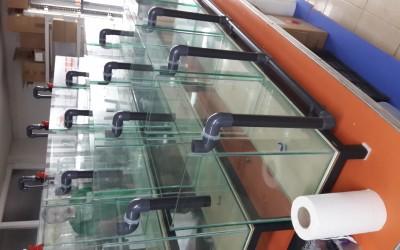 Ege Üniversitesi Bioloji Lab.-Deney Akvaryumları